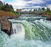 Spokane River Falls by Tamara Valjean