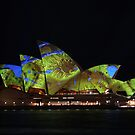 The Colours of Sydney (10) by Scott Westlake