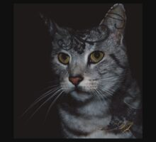 Ocicat Design by StarKatz