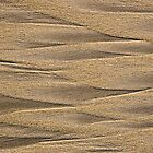 Abstract beach sand by Joslin Hartley