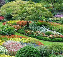 Sunken Garden, Butchart Gardens, Victoria, Vancouver Island, Canada by claudiarose99