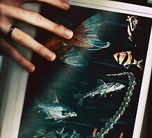 False Aquarium by ghastly