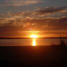 Sunset by MaddyPaddy