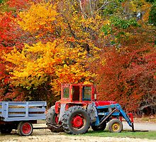 Apple Orchard Tractor by Monica M. Scanlan