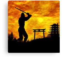 Ninja on the attack Canvas Print