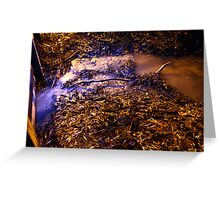 Echuca at night 3 Greeting Card