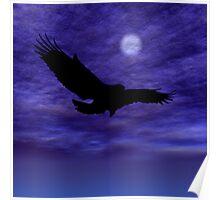 Eagle Gliding Poster