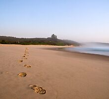 Follow in my footsteps by Andrew Murrell