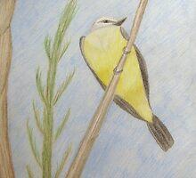 Western Kingbird by janetmarston