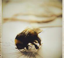 Bumblebee by Paperflowergirl