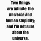 Two things are infinite: the universe and human stupidity; and I'm not sure about the universe by sattva