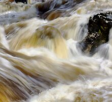 The River Wharfe at Linton Falls by Roantrum