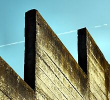 Mossy Wall and Contrail by Bob Wall
