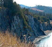 Kodiak Cliffside by Dannah Johnston