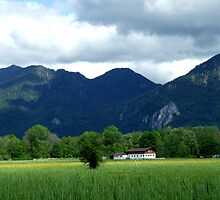 German Countryside I by Daidalos