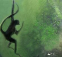 Spider Monkey in Motion 1 by Christopher Johnson