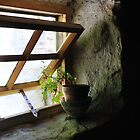 Simplicity of an Irish Cottage Window by ragman