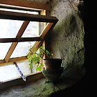 Simplicity of an Irish Cottage Window by ragman