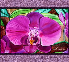 Passion of Orchids by Nira Dabush