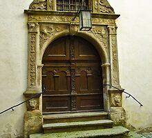 The Door by John Weakly