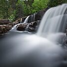 The Swimming Hole by Kevin  Kroeker