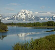 Oxbow Bend by Luann wilslef