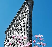 Spring in New York City by Fiona french