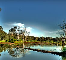 Wetlands Magic - Wonga Wetlands, Albury NSW - The HDR Experience by Philip Johnson