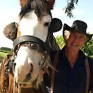 Working Horse at Vintage Fair, Warragul, Gippsland by Bev Pascoe