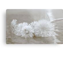 Floating Dandelions Metal Print