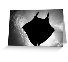 Manta Silhouette B&W Greeting Card