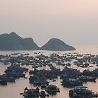 Cat Ba Island, Halong Bay by sarahric