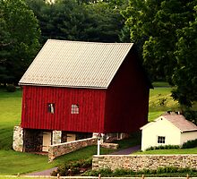 The Barn and Springhouse by Polly Peacock