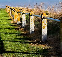 Clifftop Fence by Geoff Carpenter
