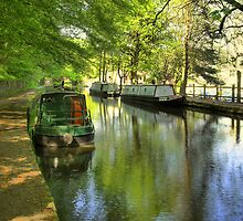 Narrow Boats by Jude Gidney