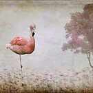 Flamingo by Kimberly Palmer