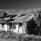 Sod Cottage by Wayne England