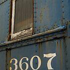 3607 by Donna Adamski