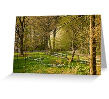 Springtime in New England Greeting Card