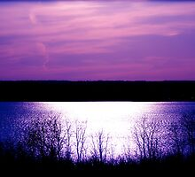 Purple Sunset by Tina Longwell