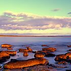 Currarong Beach - South Coast NSW by Steve Fox