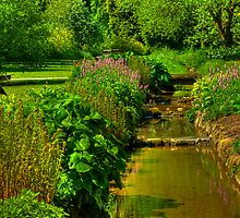 Garden Stream by Trevor Kersley