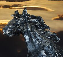 Horses Head by Charles Gotthard