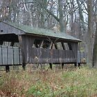 Covered Bridge - Wildwood Park by tmramm