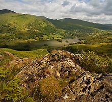 Rydal Water  from Loughrigg Fell  by eddiej
