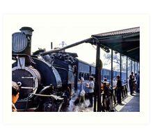 Minature steam train, India Art Print