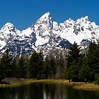 Midday &quot;Grand&quot; View - Teton National Park by Stephen Beattie