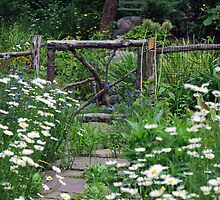 Stepping Stones Through the Garden   by Monica M. Scanlan