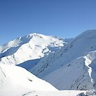 The Southern Alps by Paul Duckett