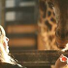 Girl loves giraffe by Pamela Troni